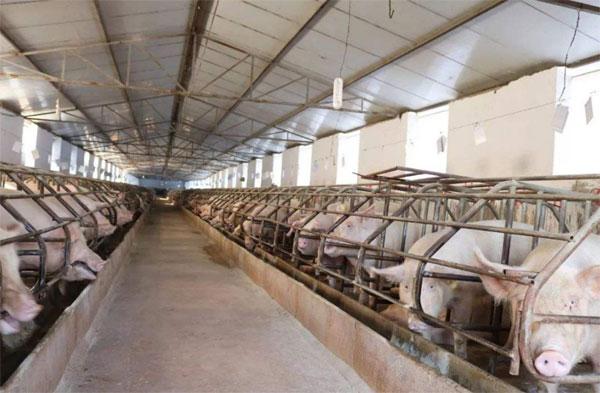 养殖场的清洗难题